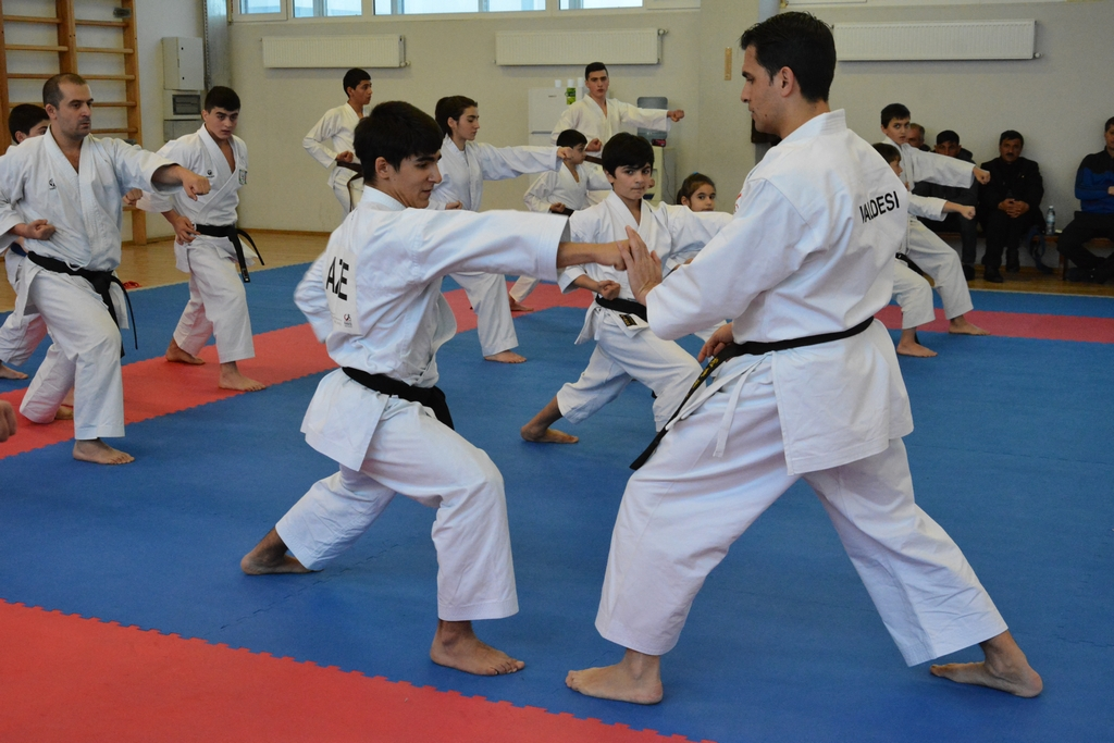 Valdesi Karate Academy Membership